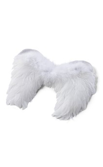Click for more information about Feather Wings (White)